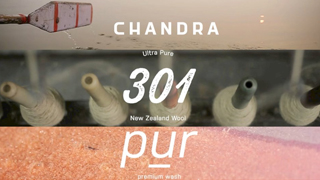 Chandra Carpets